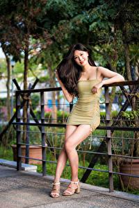Bilder Asiatisches Posiert Kleid Bein Starren Brünette Mädchens