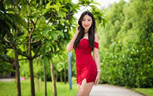 Fotos Asiatisches Posiert Kleid Lächeln Starren junge Frauen
