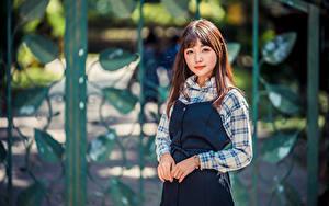 Fotos Asiaten Pose Starren Bokeh junge frau