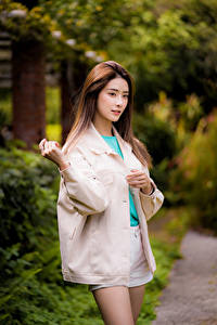 Bilder Asiatisches Posiert Blick Unscharfer Hintergrund Mädchens