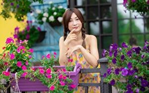 Hintergrundbilder Asiatische Posiert Hand Zopf Blick junge Frauen
