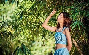 Fotos Asiatische Posiert Hand Ast junge frau