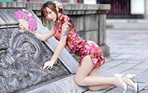 Bilder Asiaten Posiert Bein Kleid Braune Haare Tätowierung Starren Junge frau Mädchens