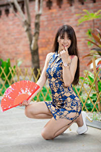 Bilder Asiaten Posiert Bein Kleid Fächer Unscharfer Hintergrund junge frau