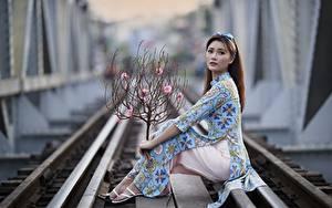 Bilder Asiatisches Pose Schienen Kleid Blick Ast Unscharfer Hintergrund junge frau