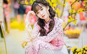 Fotos Asiatisches Posiert Sitzt Hand Braunhaarige Blick Bokeh junge Frauen