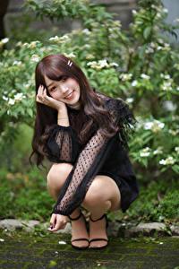 Fotos Asiaten Pose Sitzt Lächeln Blick Braune Haare Mädchens