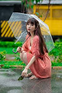 Bilder Asiaten Pose Sitzt Regenschirm Kleid Blick Mädchens