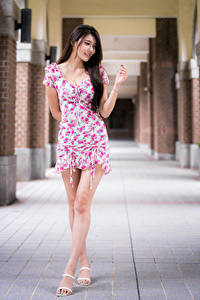 Bilder Asiatische Posiert Lächeln Kleid Bein Mädchens