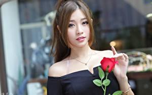 Bilder Asiatische Rosen Bokeh Braune Haare Blick Hand Mädchens