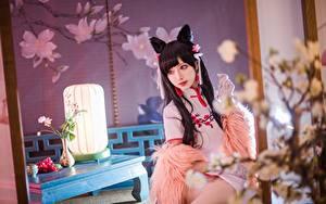 Fotos Asiaten Unscharfer Hintergrund Brünette Sitzt Blick Cosplay Japanisch Shika Cosplay junge frau