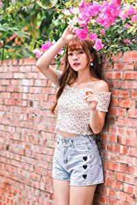 Hintergrundbilder Asiatisches Shorts Bluse Hand Starren Mädchens