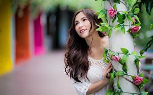 Bilder Asiatische Strauch Bokeh Braunhaarige Blick Lächeln Hand