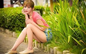 Fotos Asiaten Strauch Braunhaarige Sitzt Bein junge Frauen