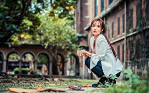 Fotos Asiatische Sitzen Braunhaarige Blick junge Frauen
