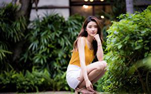 Fotos Asiatische Sitzend Braunhaarige Hand Blick Bokeh Mädchens