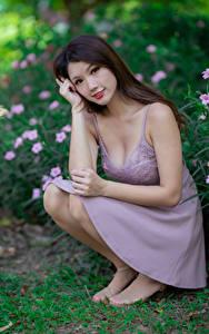 Bilder Asiaten Sitzt Kleid Starren Braune Haare junge frau