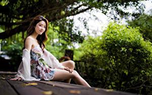 Bilder Asiaten Sitzt Kleid Bein Blick junge frau
