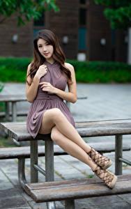 Bilder Asiaten Sitzend Kleid Bein Blick Bokeh Schön junge Frauen