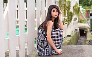 Fotos Asiatische Sitzend Zaun Blick junge Frauen