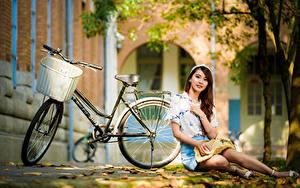 Hintergrundbilder Asiaten Sitzen Blatt Fahrräder Rock Bluse Blick junge Frauen