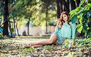 Hintergrundbilder Asiaten Sitzt Blatt Bein Bluse Starren Unscharfer Hintergrund junge frau