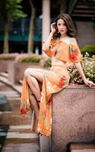 Bilder Asiatisches Sitzend Blick Bokeh Mädchens