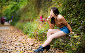 Bilder Asiatisches Sitzend Bein Blattwerk Unscharfer Hintergrund junge Frauen