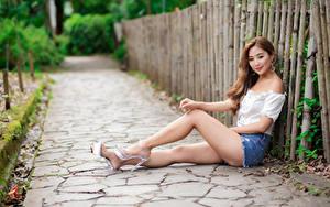 Bilder Asiatische Sitzt Bein Shorts Bluse Starren Bokeh junge Frauen