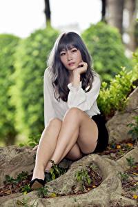 Fotos Asiaten Sitzen Bein Rock Bluse Blick junge Frauen