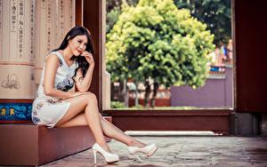 Fotos Asiatische Sitzt Bein Stöckelschuh Kleid Lächeln Mädchens