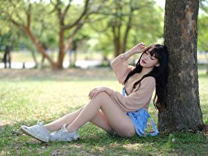 Hintergrundbilder Asiatische Sitzt Bein Baumstamm Unscharfer Hintergrund junge Frauen