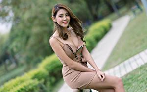 Fotos Asiatische Lächeln Pose Kleid Dekolleté Starren Bokeh junge Frauen