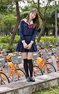 Bilder Asiatisches Lächeln Schülerin Blick Braunhaarige junge frau