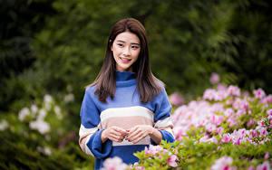 Hintergrundbilder Asiatisches Sweatshirt Hand Blick Bokeh Braunhaarige Mädchens