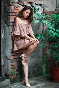 Bilder Asiaten Wände Pose Bein Kleid Blick junge frau