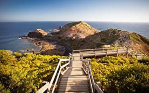 Fotos Australien Küste Stiege Hügel Cape Schanck Boardwalk