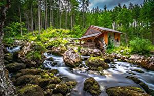Bilder Österreich Berg Steine Bach Bäume Wassermühle Laubmoose Schwarzbach Creek