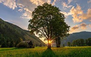 Hintergrundbilder Österreich Berg Sonnenaufgänge und Sonnenuntergänge Lichtstrahl Bäume Gras Ramsau