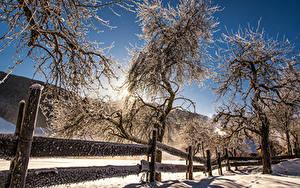 Fotos Österreich Winter Schnee Bäume Zaun Sonne Mittertal Natur
