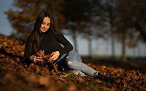 Fotos Herbst Unscharfer Hintergrund Brünette Blatt Jeans Ruhen Anastasia junge frau