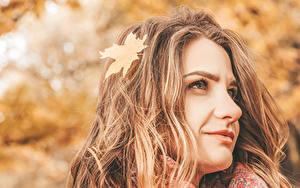 Bilder Herbst Unscharfer Hintergrund Gesicht Braunhaarige Blick Blatt Haar junge frau