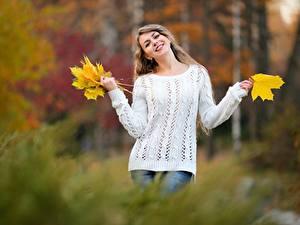Fotos Herbst Bokeh Pose Blatt Lächeln Sweatshirt Mädchens