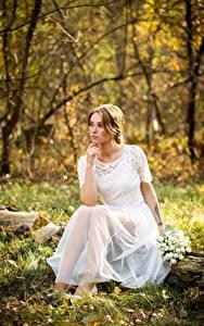 Desktop hintergrundbilder Herbst Blumensträuße Gras Blatt Kleid Sitzen Bräute junge Frauen