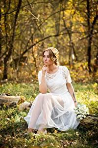 Fotos Herbst Blumensträuße Gras Blatt Kleid Sitzen Bräute junge Frauen
