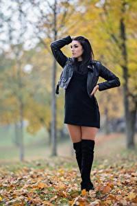 Hintergrundbilder Herbst Brünette Blatt Pose Hand Jacke Bein Stiefel Denise Jakueline Mädchens