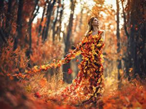 Fonds d'écran Automne Forêts Les robes Feuillage Autumn spell
