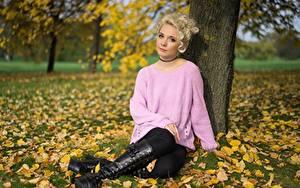 Fotos Herbst Gras Blattwerk Blond Mädchen Sweatshirt Sitzen Hand Bein Stiefel Mädchens