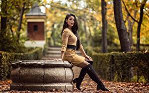 Bilder Herbst Blatt Sitzend Stiefel Bein Kleid Blick Lorena Mädchens