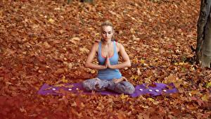 Bilder Herbst Lotussitz Blondine Sitzend Joga Mädchens